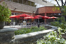 Join us for dining or drinks in the courtyard