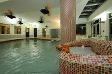 Holiday Inn Sarasota Airport Swimming Pool